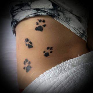 paws-tattoo